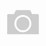 Window & Glass Cleaner 5lt